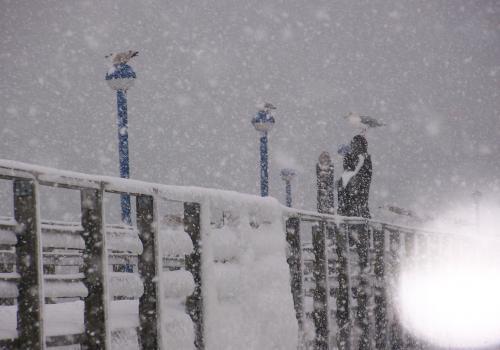 Seebruecke (zingst-im-winter_100_6276.JPG) wird geladen. Ein Zingster Winter erwartet Sie.