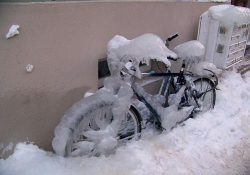 Winterimpressionen (zingst-im-winter_100_6577.JPG) wird geladen. Ein Zingster Winter erwartet Sie.