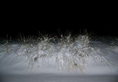 Winterstrand (zingst-im-winter_100_6376.JPG) wird geladen. Ein Zingster Winter erwartet Sie.