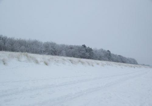 Winterstrand (zingst-im-winter_100_6807.JPG) wird geladen. Ein Zingster Winter erwartet Sie.
